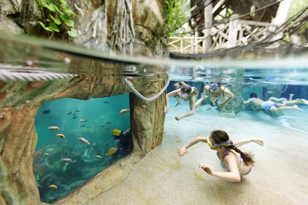 Center Parcs Zwemmen.Zwemmen En Dineren