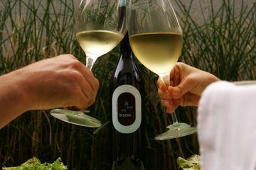 Proosten met wijn