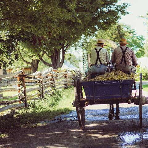 Ouderwets met paard en wagen