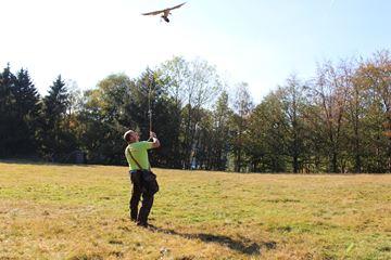 Demonstratie roofvogel