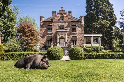 Culinair genieten in het kleinste kasteel van Nederland