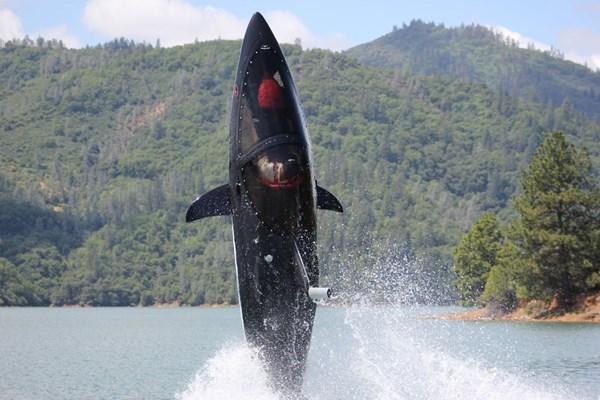 Springen met een haai capsule