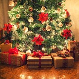 Het ideale Kerstcadeau!
