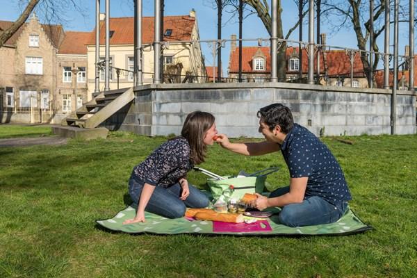 Picknick Stadspark