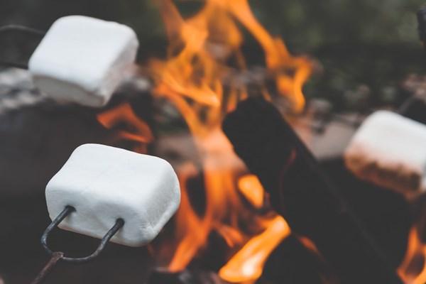 Marshmallows kampvuur