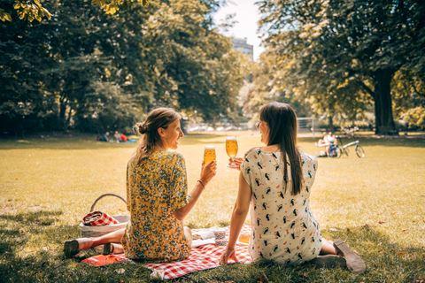 Picknick in Antwerpen